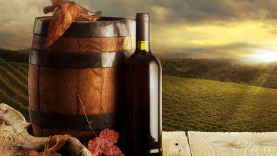 Ден на лозарите винарите и градинарите и кръчмарите
