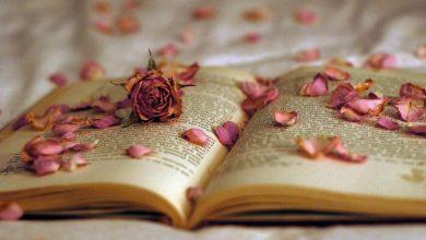Световен ден на поезията
