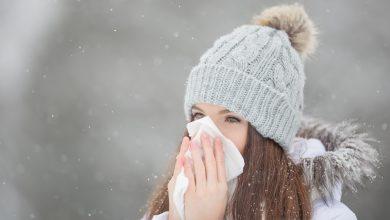 студова алергия