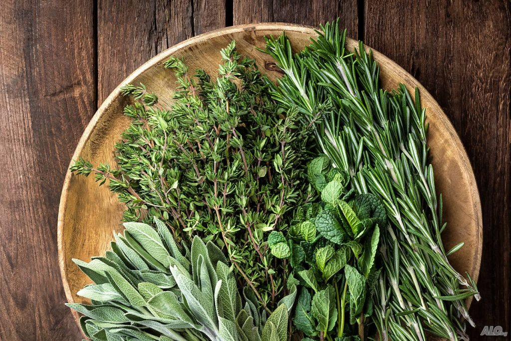 Бъдете здрави от билките в природата