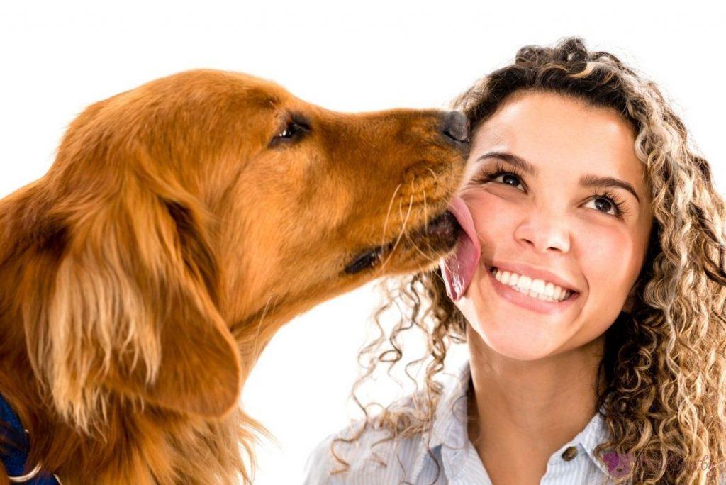 Не позволявайте на кучето да ви ближе лицето