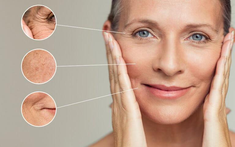 Влияние на антиоксидантите върху процесите на стареене