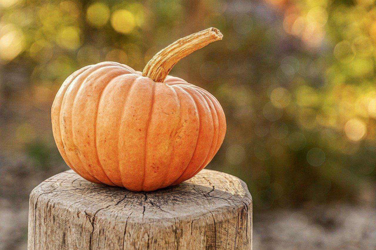 Есенни плодове за здраве и красота - тиква