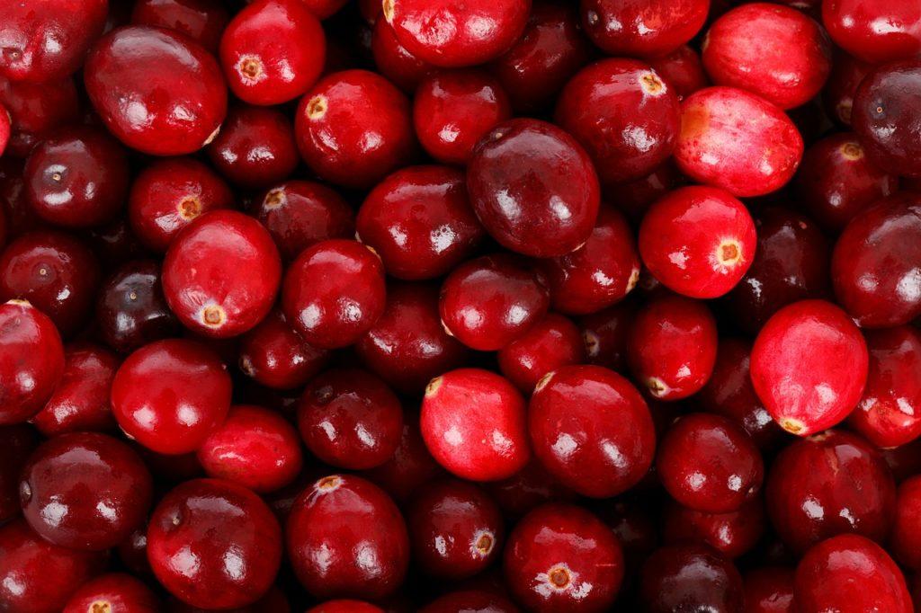 Есенни плодове за здраве и красота - червени боровинки