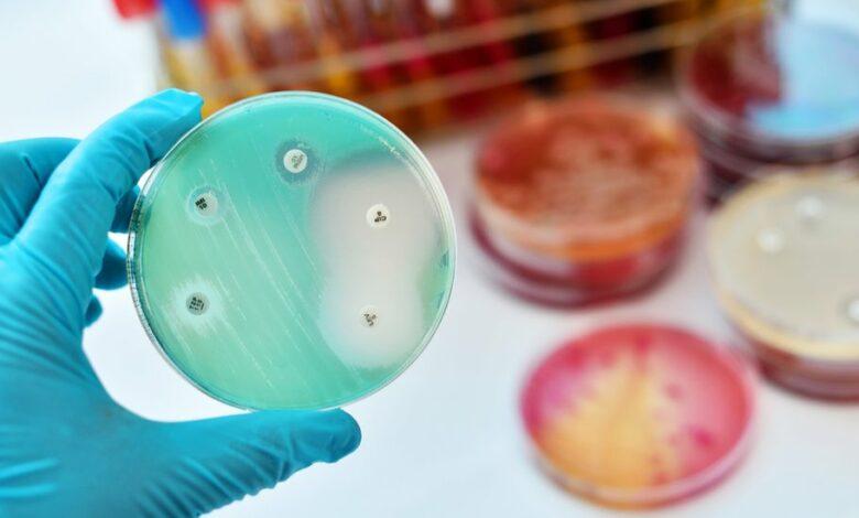супербактерии